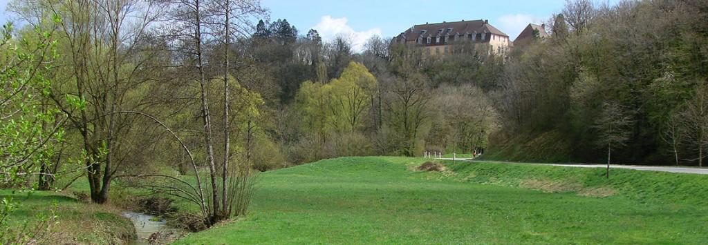 En direction de Pelousey ; vue sur la lanterne et le château d'Uzel